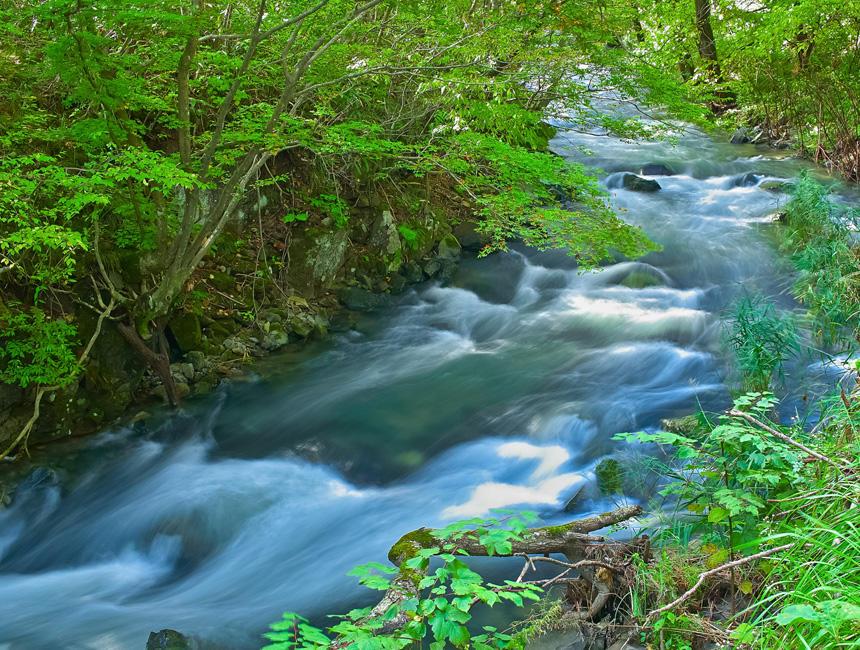 古代の人々は川や池での沐浴で身体の汚れを落としたり、 病気や災害などから逃れるため、水による浄めを行っていた。